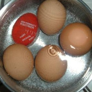 norpro egg timer shown with eggs boiling.