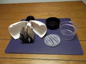 The slap chop displayed here shows all of the individual parts.