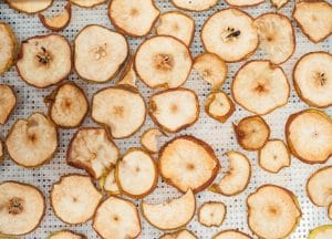 Detailed photo of home made dehydrated apples and pears